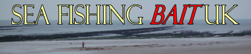 sea fishing bait uk header (image)